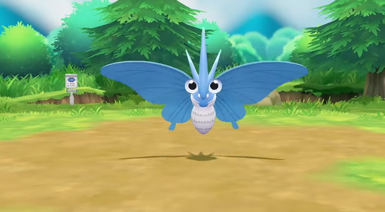 Blue-Colored Shiny Venomoth