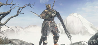 DS3 Armor battle screenshot