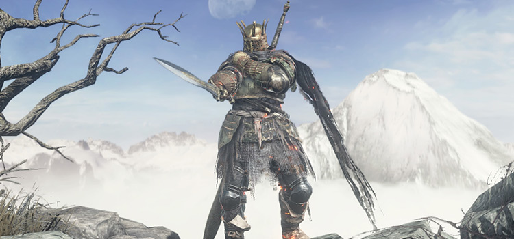 DS3 Armor battle screenshot