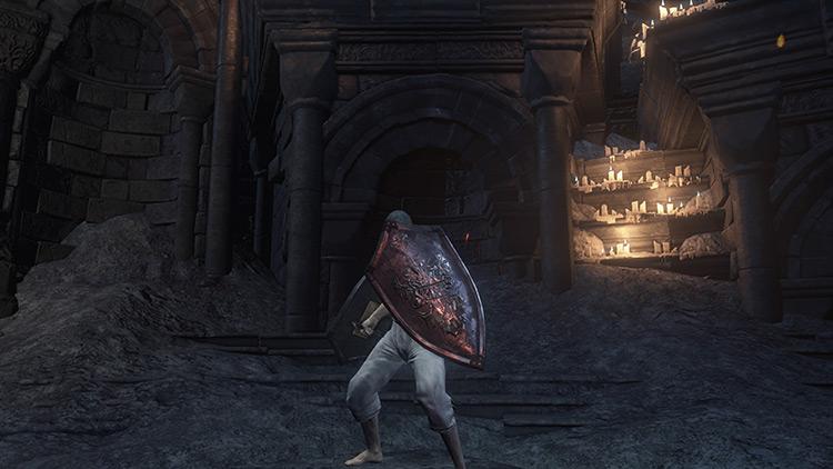 Shield of Want (Soul Gain) from Dark Souls 3