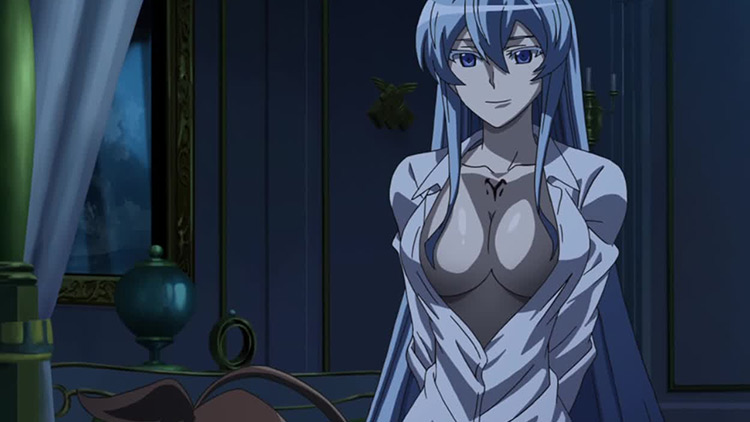 Esdeath from Akame ga Kill! anime