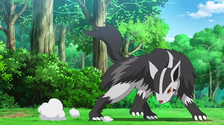 Mightyena in Pokémon anime