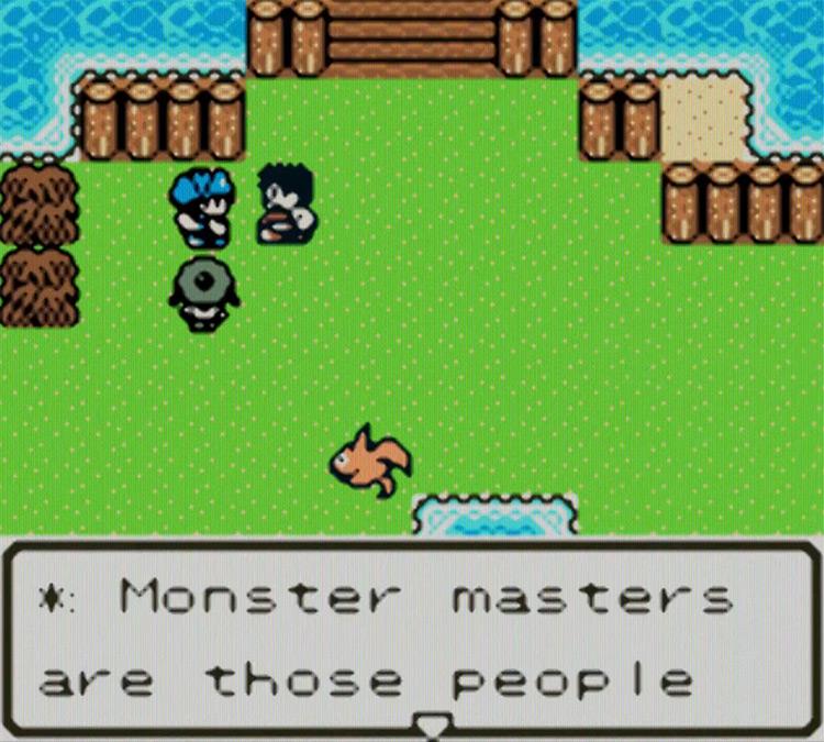 Dragon Warrior Monsters 2 gameplay