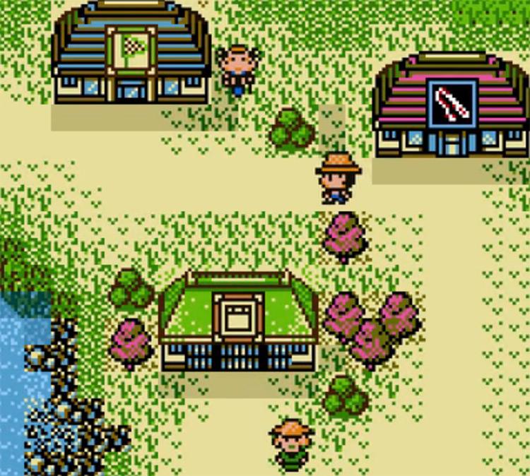 Legend of the River King 2 GBC screenshot