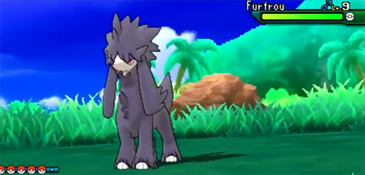 Shiny Furfrou