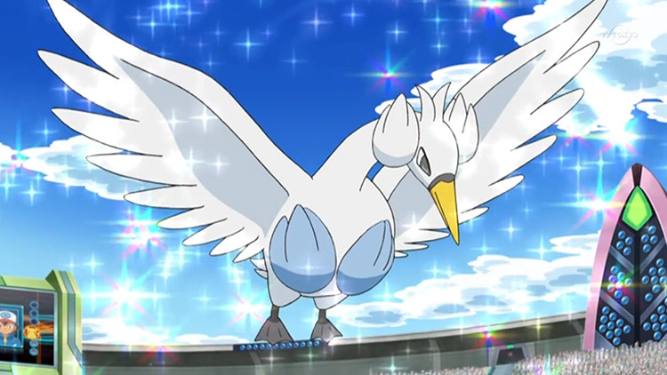 Swanna Dual-Type Pokemon in the anime