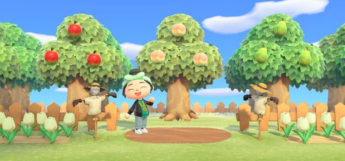 Orchard Fruit Trees Screenshot from ACNH