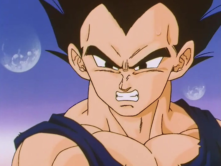 Vegeta from Dragon Ball Z anime