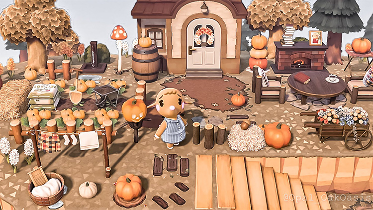 Cottagecore Pumpkin Patch Idea - ACNH