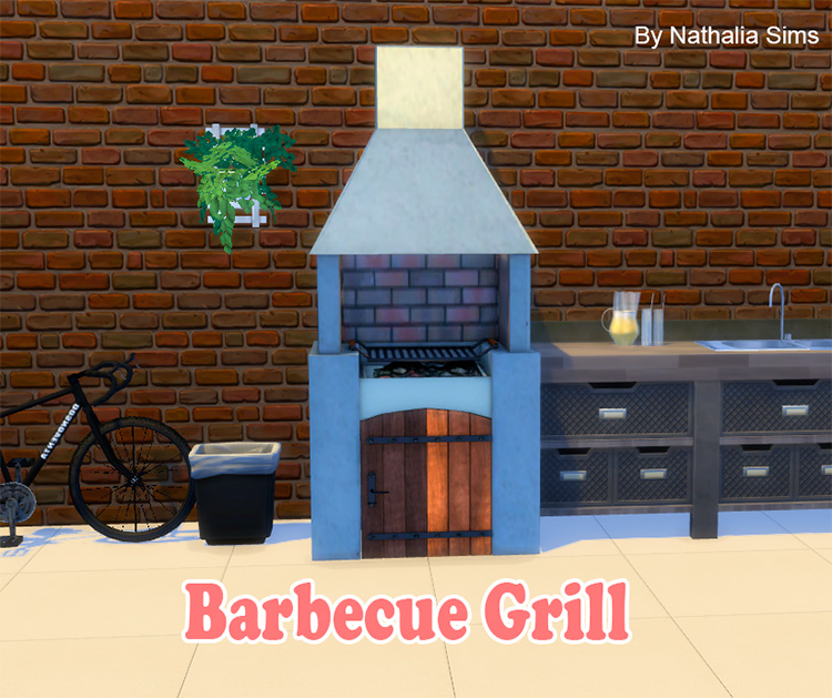 Barbecue Grill Conversion CC