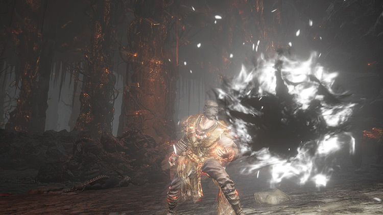 Black Flame Dark Souls 3 screenshot