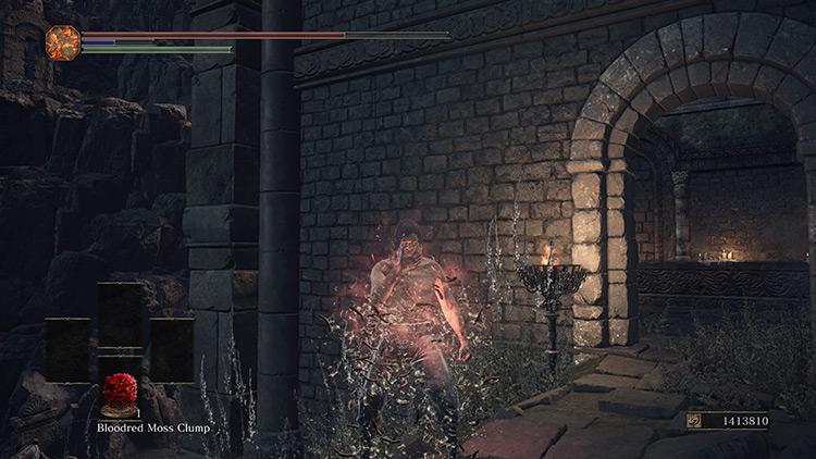 Bloodred Moss Clump Dark Souls 3
