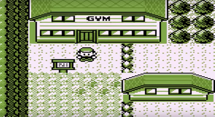 Pokémon Brown rom hack screenshot