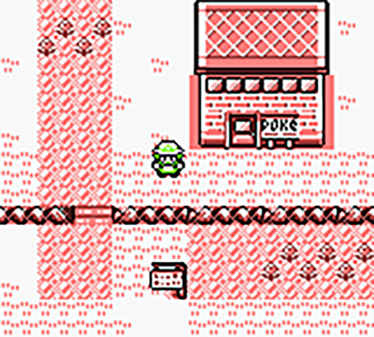 Pokémon Red/Blue Gender Selection rom