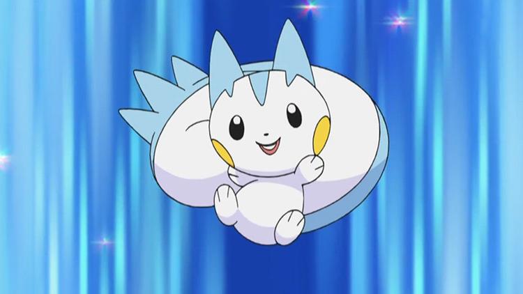 Pachirisu from Pokemon anime