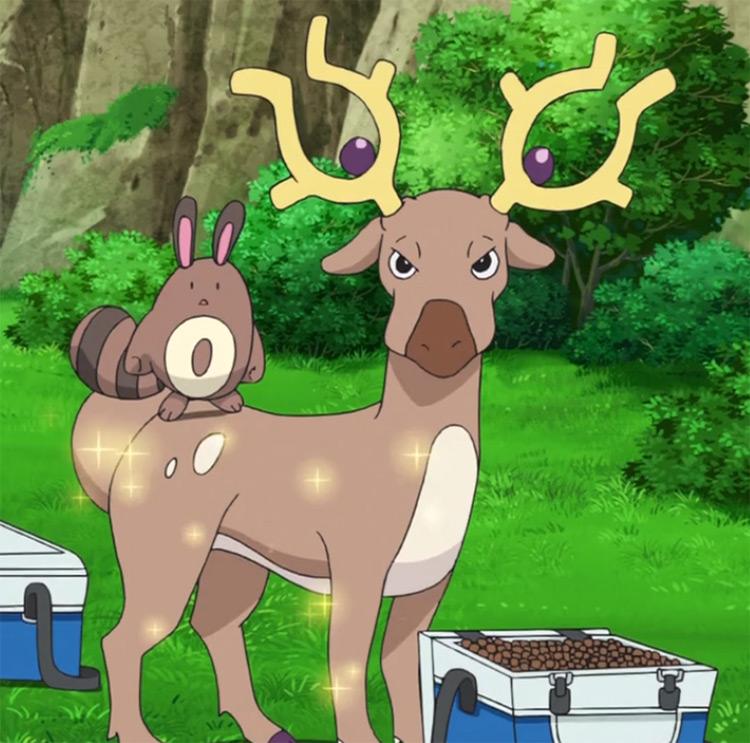 Stantler Pokemon in the anime