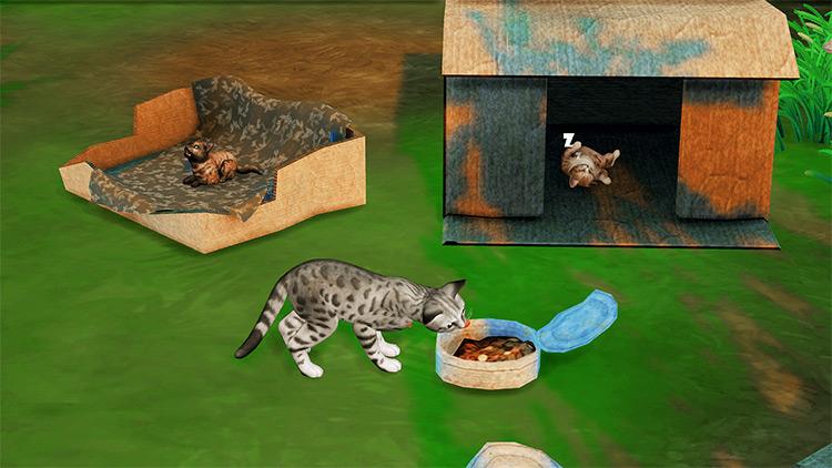 Homeless Pet Set Sims 4 CC