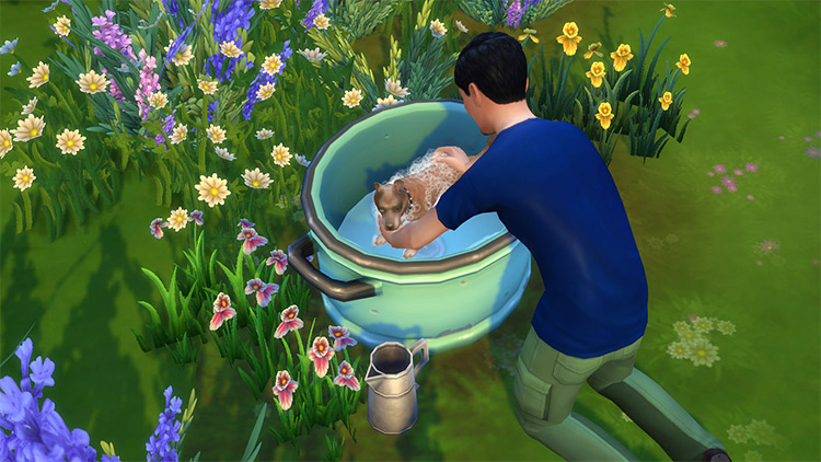 Toddler and Pet Wash Tub for Sims 4