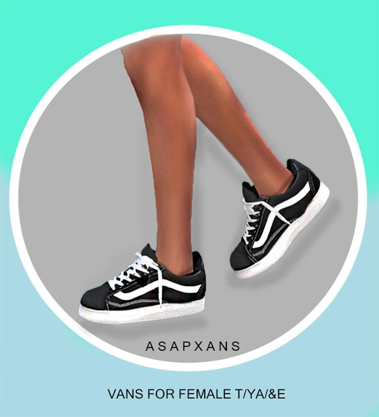 Short heel Vans sneakers TS4 CC