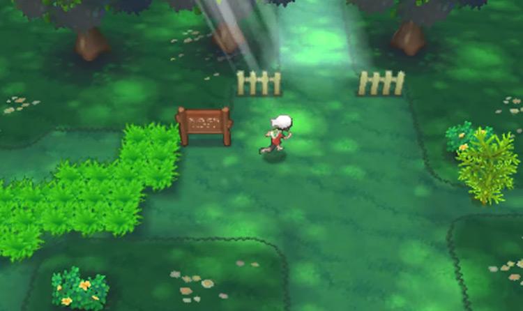 Pokémon Alpha Sapphire & Omega Ruby gameplay