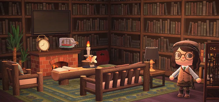 Best Animal Crossing: New Horizons Library Ideas