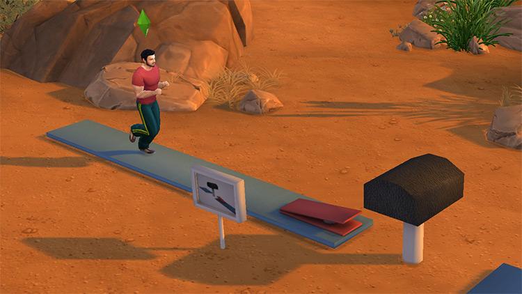 Functional Gymnastic Vault (w/ Custom Animations) TS4 CC