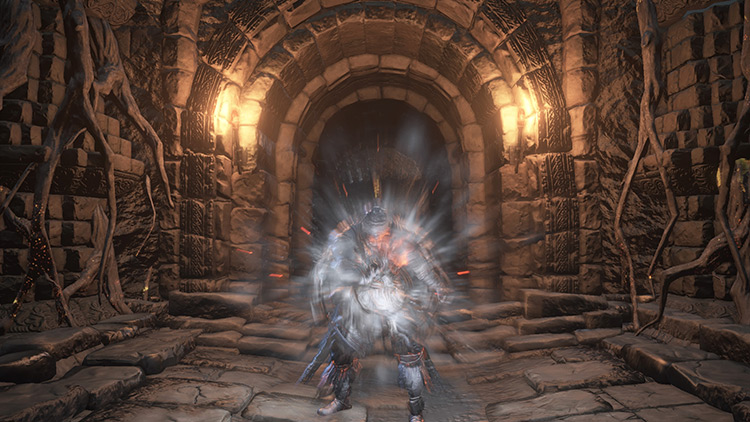 Iron Flesh from Dark Souls 3