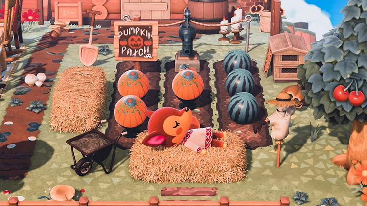 Autumn Pumpkin Patch Lounge Area - ACNH