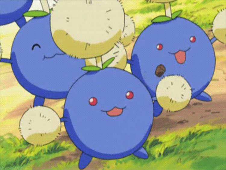 Jumpluff screenshot in the Pokemon anime