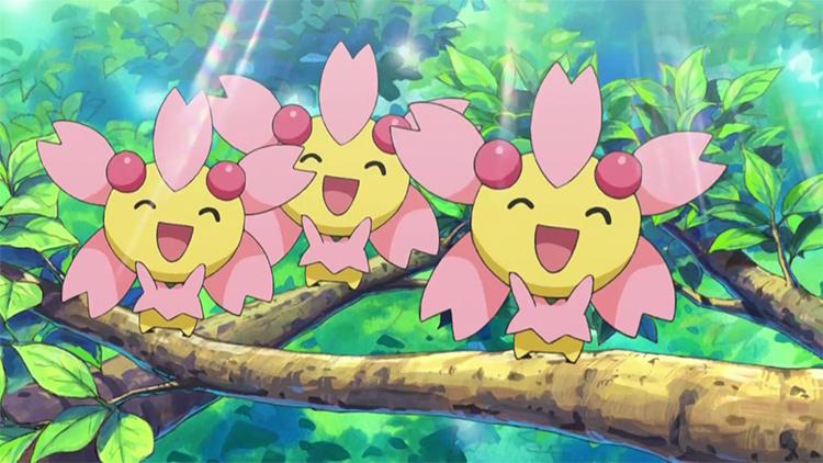 Cherrim in the Pokemon anime