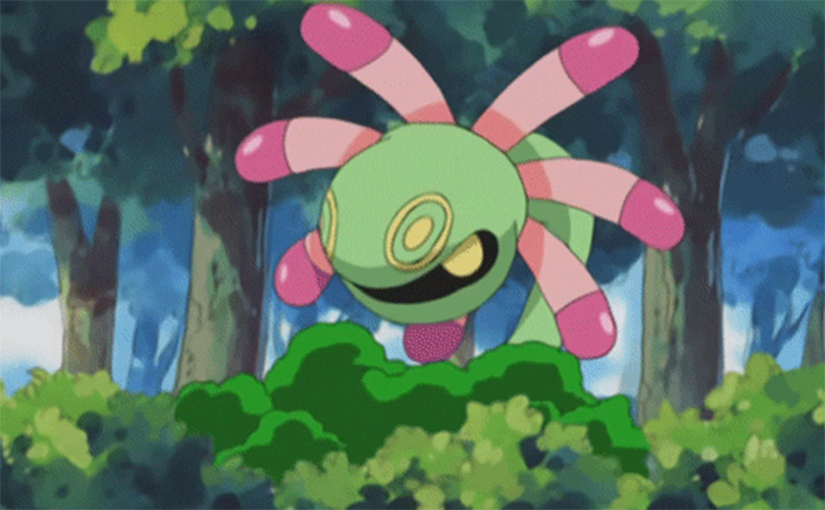 Lileep in the Pokemon anime