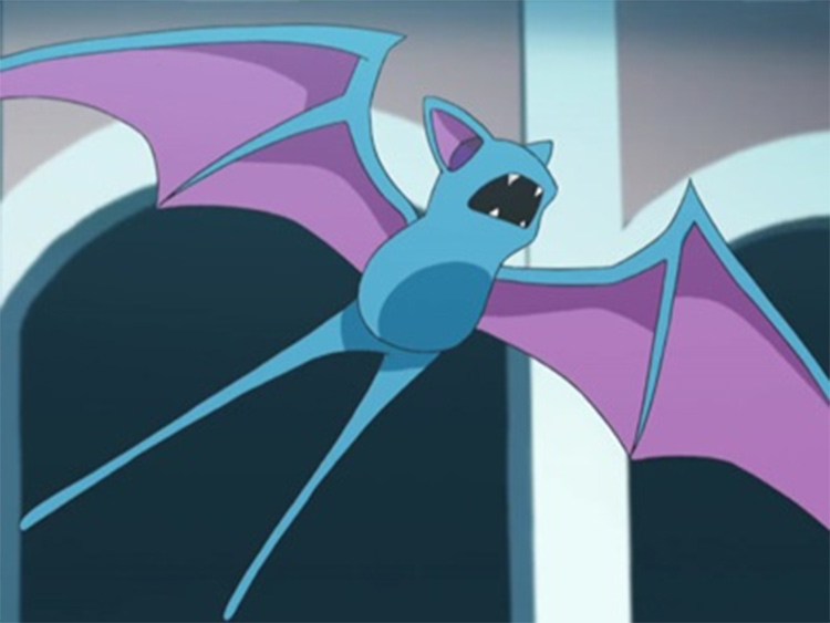 Zubat, the original bat Pokemon anime screenshot