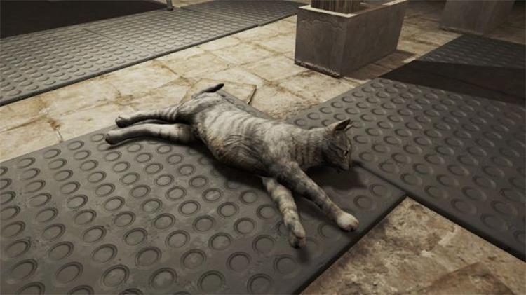 FA4 More Realistic Cats