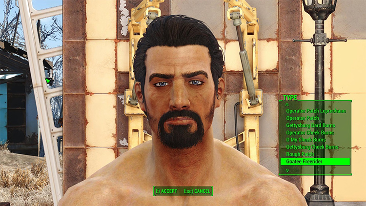 Lots More Facial Hair Fo4