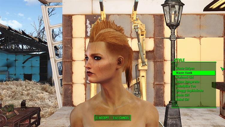 Lots More Female Hairstyles fo4