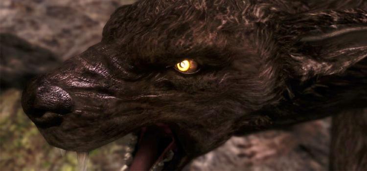 Moonlight werewolf in skyrim