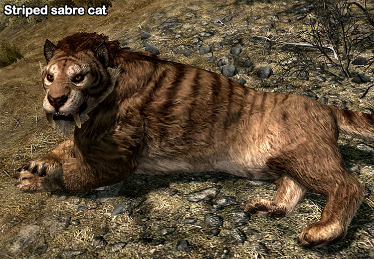 Bellyaches Animal Creature pack mod