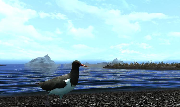 Birds of Skyrim mod