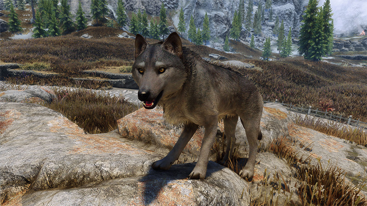 True Wolves of Skyrim mod