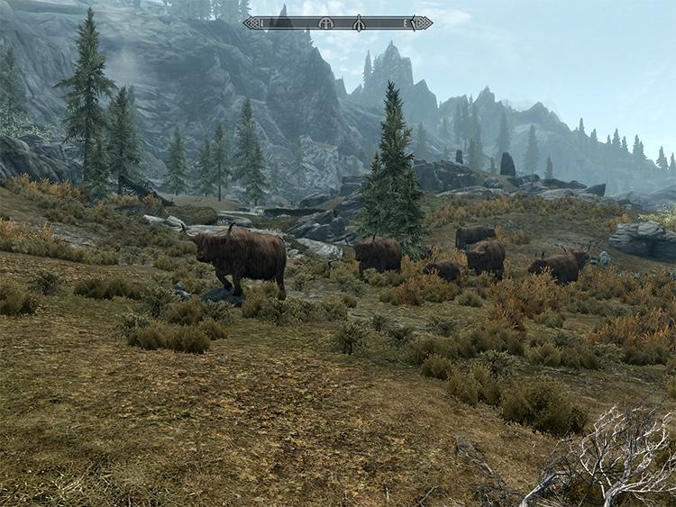 Real Wildlife in Skyrim