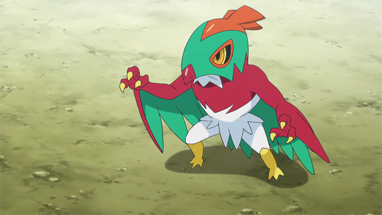 Hawlucha in the anime