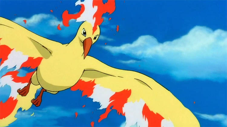 Moltres in the anime