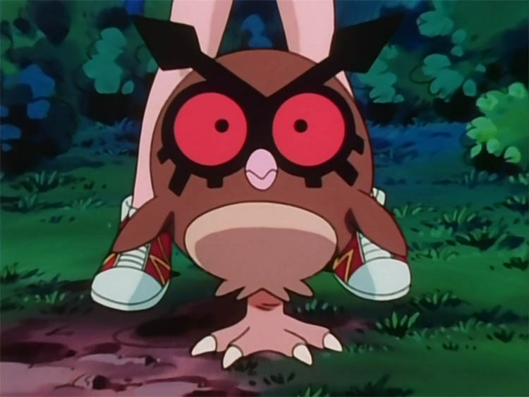 Hoothoot in the anime