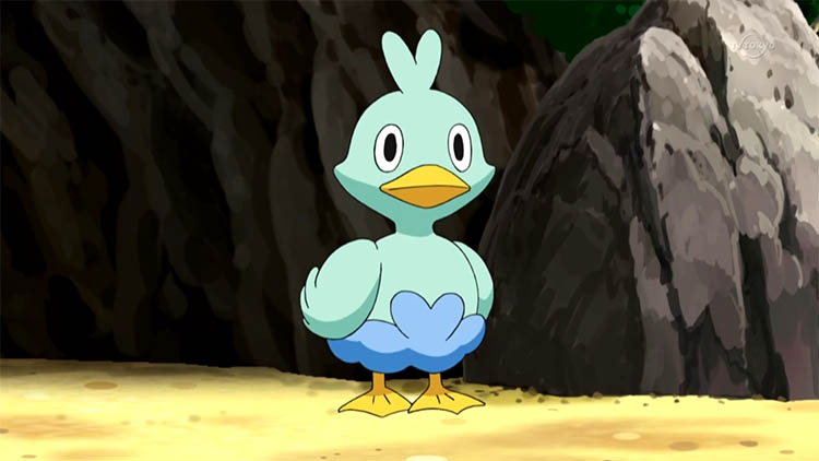 Ducklett in the anime