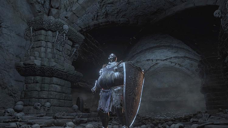 Wolf Knight's Greatshield in DS3