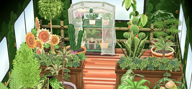 Greenhouse Interior Camper Idea in New Horizons