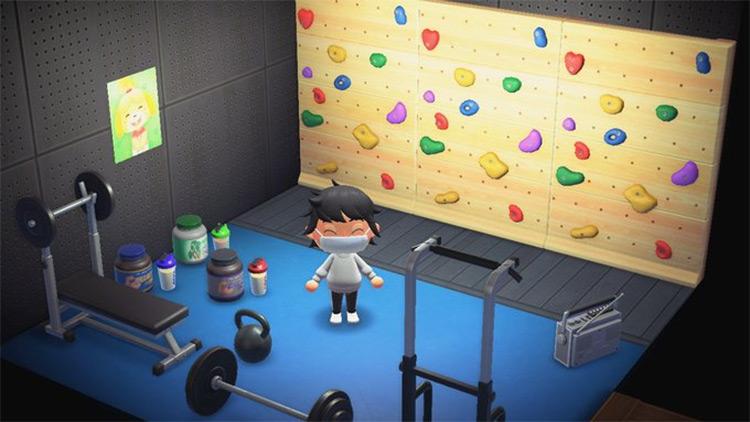 Home Gym in Basement - ACNH Idea