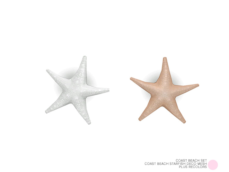 Coast Beach Starfish for Sims 4