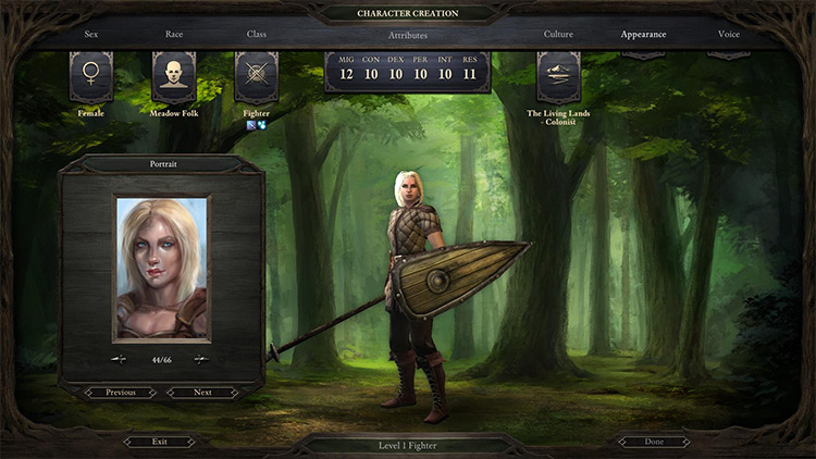 Baldur's Gate Portraits Mod for PoE1