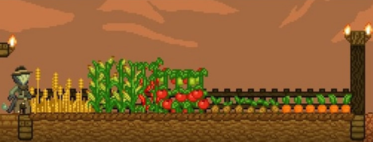 Compact Crops Mod for Starbound